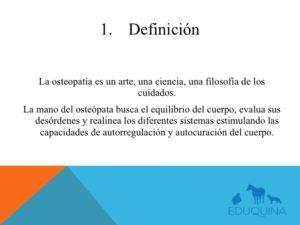 Diapositiva03
